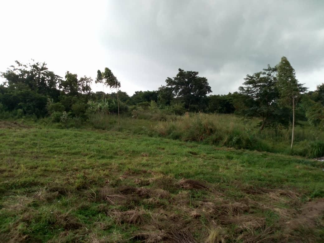 Gelände für Fußballplatz